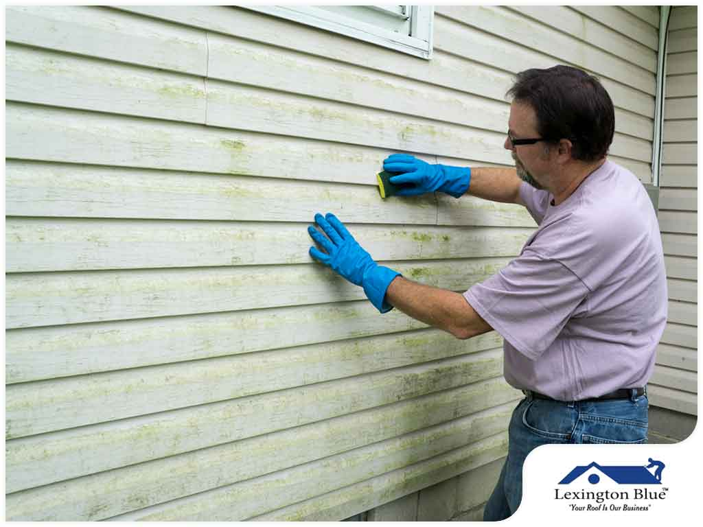 tips-to-effectively-spring-clean-your-vinyl-siding